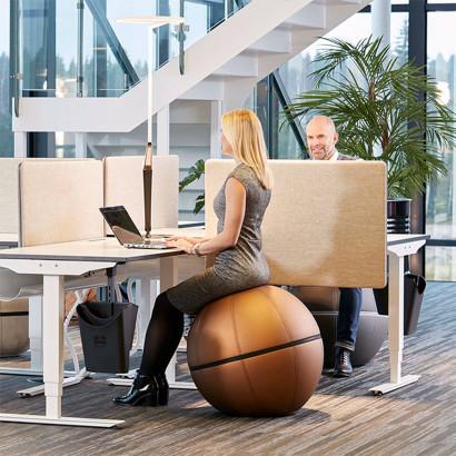 Götessons office ballz - ergonomisk sittmöbel
